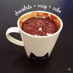 alinaerium-chocolate-mug-cake-blog