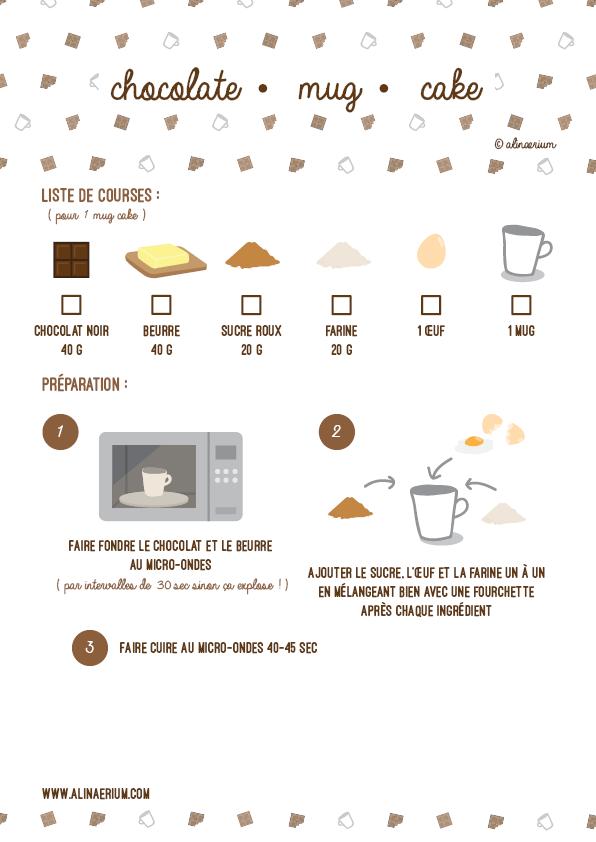 alinaerium-chocolate-mug-cake-recette-blog