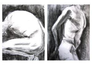 alinaerium-illustration-nu