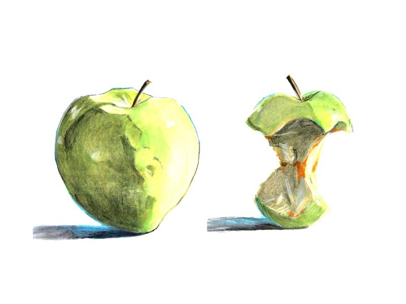 alinaerium-illustration-pomme